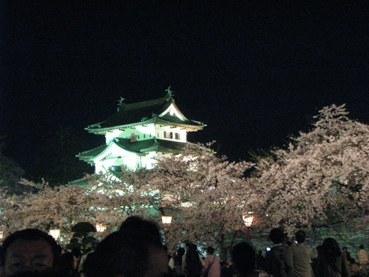 ◆夜桜◆_c0078202_11273988.jpg