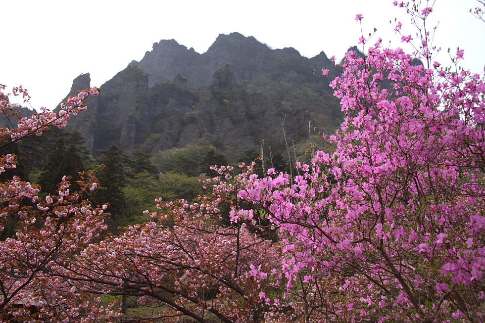 岩山二つ - 武甲山と妙義山 -_b0190710_23414056.jpg