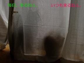 b0200310_22212885.jpg