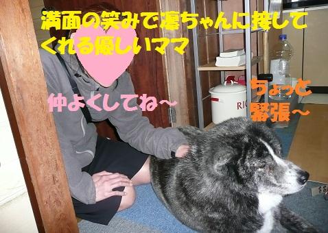 f0121712_0535622.jpg