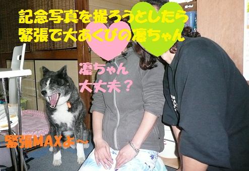 f0121712_0542694.jpg