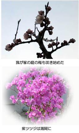 f0227323_17145349.jpg