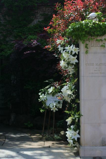 ユリの階段とエントランス シェ松尾松濤レストランさまへの装花_a0042928_1846453.jpg