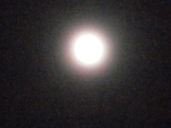 愛色の月_a0174458_2331680.jpg