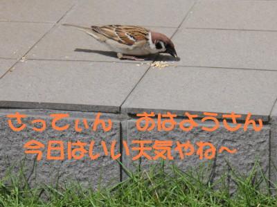 b0158061_2131952.jpg