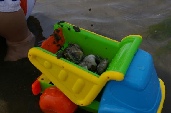 潮干狩りPart 1/shellfish gathering on a beach, part1_a0186568_001744.jpg