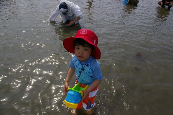 潮干狩りPart 1/shellfish gathering on a beach, part1_a0186568_23593957.jpg