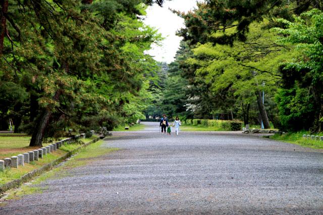 京都御苑 新緑_e0048413_18222150.jpg