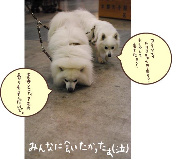 d0212419_0532220.jpg