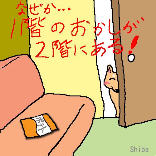 b0211125_221966.jpg
