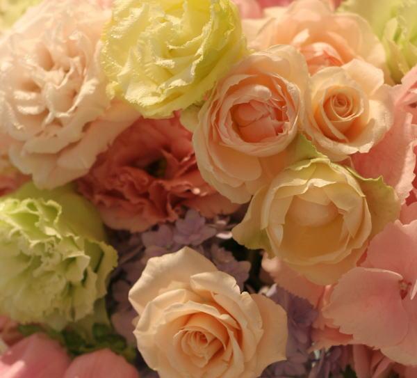 シャンパングラスと5月の装花 おまかせで  _a0042928_1943096.jpg