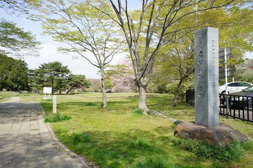 多賀城跡の桜_d0004728_845668.jpg