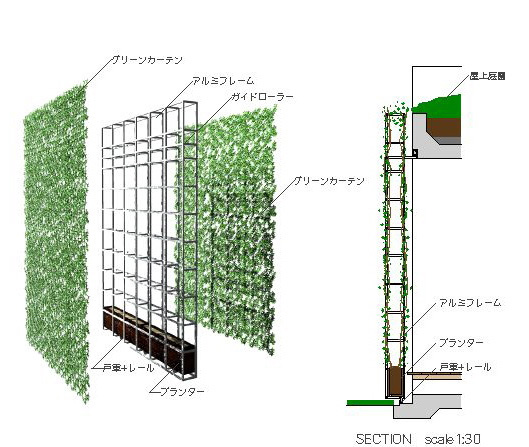 環境共生住宅 グリーンカーテン!!!_f0165030_9535726.jpg