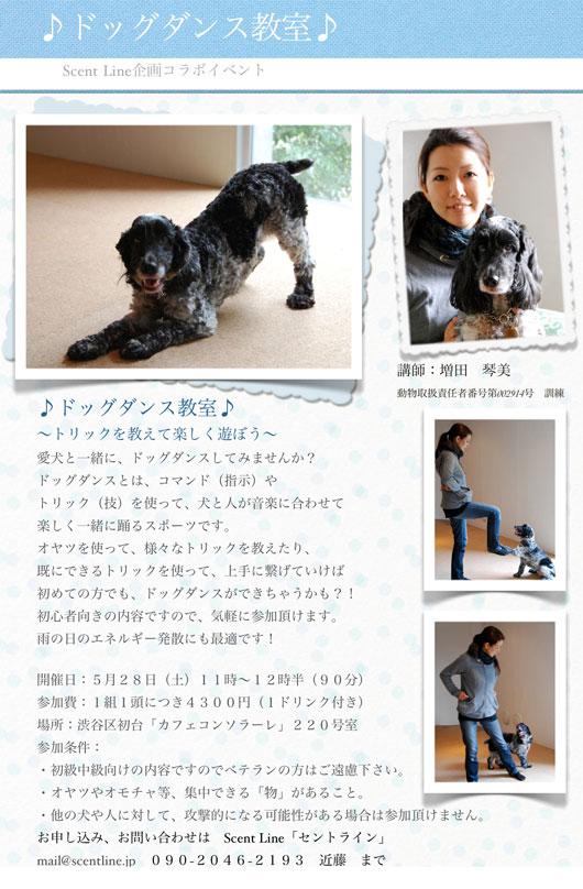 ドッグダンス教室のお知らせ_c0099133_2011479.jpg