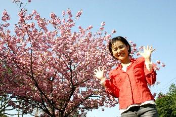 多可町のぼたん桜、満開に別れ♪_b0067283_2010764.jpg