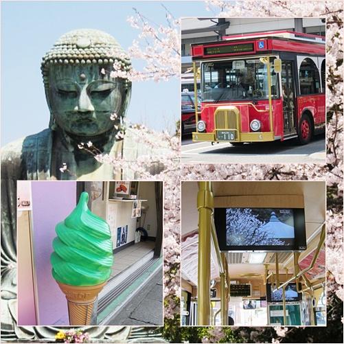 桜と大仏 @鎌倉_b0145398_1750421.jpg