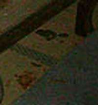 e0103408_1924360.jpg