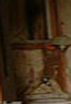 e0103408_1935497.jpg
