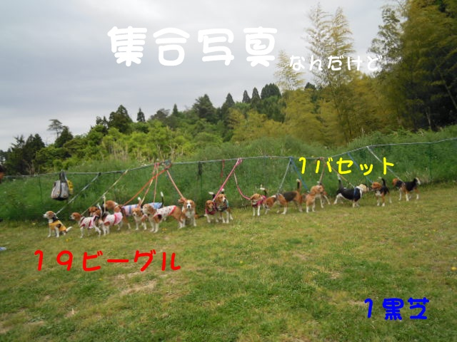 c0166622_15241216.jpg