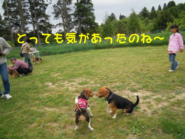 c0166622_15514376.jpg
