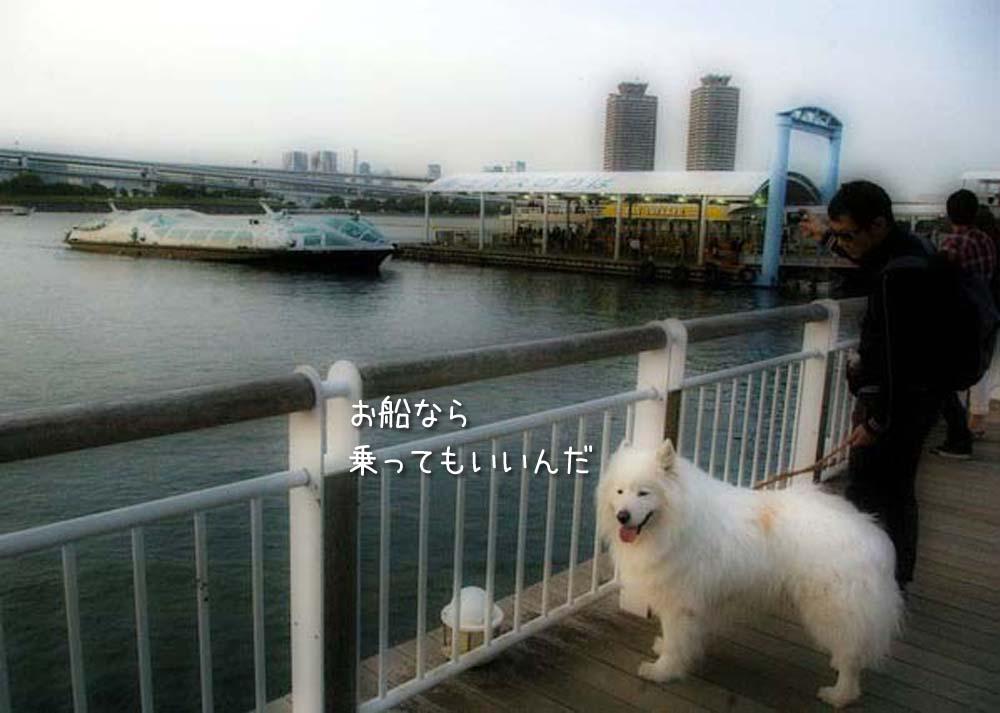 海はよぉ~_c0062832_344619.jpg