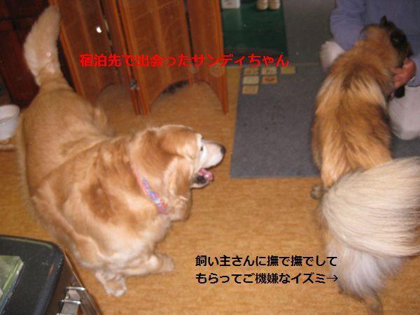 b0148945_1404263.jpg