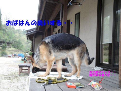 b0113663_1118583.jpg