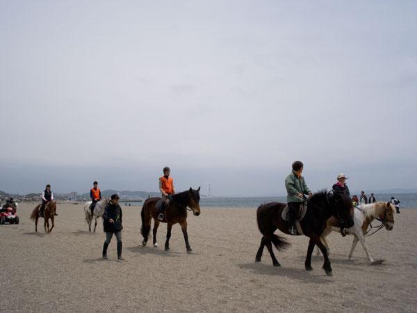 2011/05/06 三浦海岸から三崎港@ゾロ目散歩:その1_b0171364_13193717.jpg