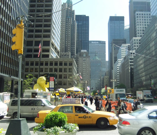 ニューヨークに巨大テディ・ベア・アート作品展示中、前向きな感情をもたらす効果も?_b0007805_920544.jpg