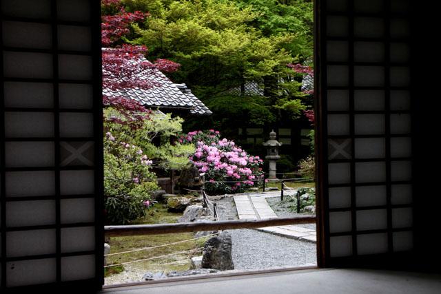 阿弥陀寺の春_e0048413_2252458.jpg