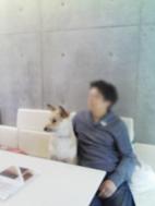 f0171341_1023180.jpg