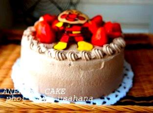 アンパンマンのチョコケーキ&こいのぼり弁当_f0193555_1227437.jpg
