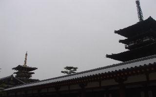 奈良に行ってきました。_e0131560_18344148.jpg