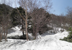 沼田まで行ってきました〜_d0126264_17471541.jpg