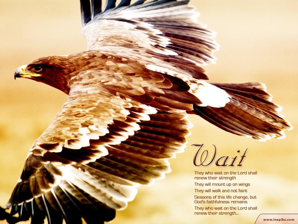 5月7日Ⅱ歴代19-21章『主の戦い』_d0155777_751463.jpg