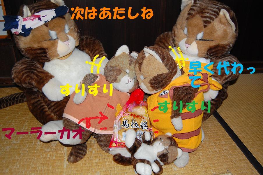 b0059978_20251223.jpg