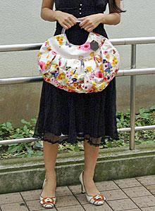 New Bag!_b0195783_14515151.jpg