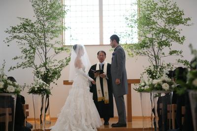 結婚式を諦めないで~応援プラン~_e0120789_15173746.jpg