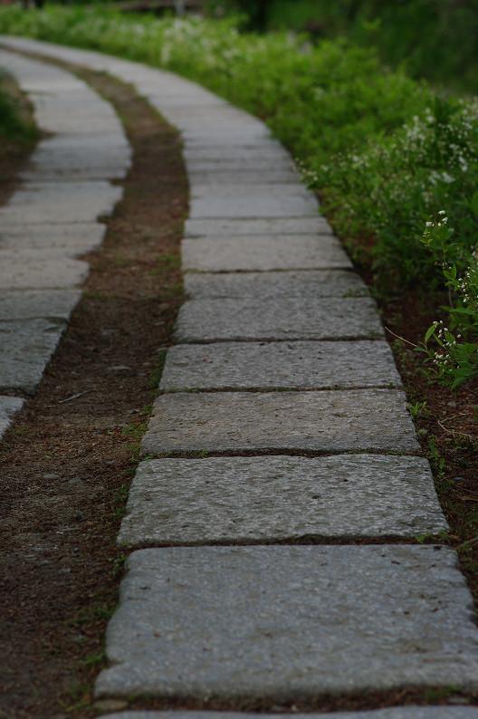 哲学の道をワンコと散歩..._f0152550_18582825.jpg