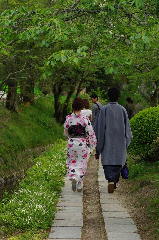 哲学の道をワンコと散歩..._f0152550_18583559.jpg