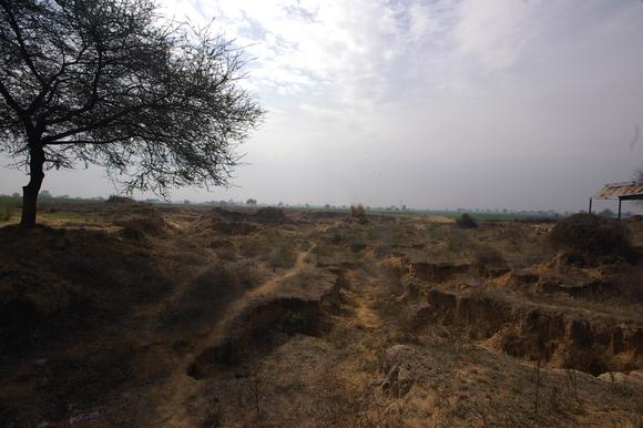 インド滞在記2011 その7: India 2011 Part7_a0186568_21332989.jpg