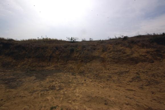インド滞在記2011 その7: India 2011 Part7_a0186568_21495542.jpg