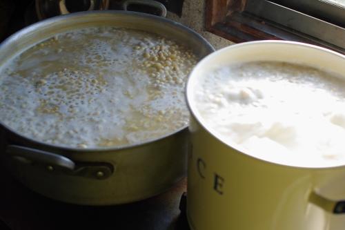 味噌作り2011 ~味噌を仕込む~_c0110869_2173712.jpg