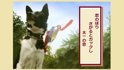 青山カワイ交遊録。出会うが友よ!_e0236072_194397.jpg