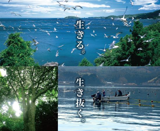 南三陸の海に思いを届けよう_f0018889_2120629.jpg