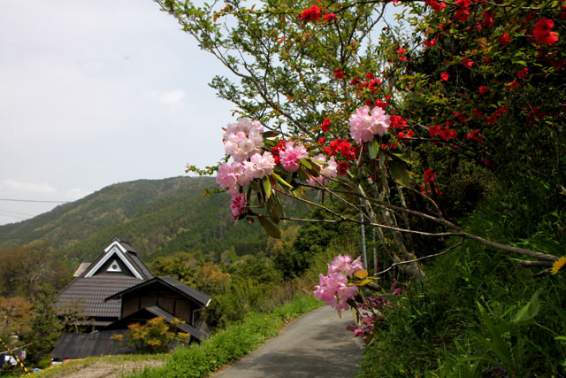 越畑の山里_e0048413_20573853.jpg