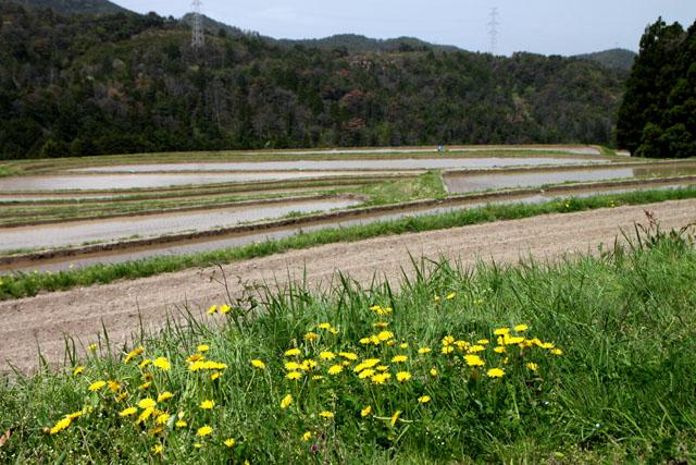 越畑の山里_e0048413_20581028.jpg
