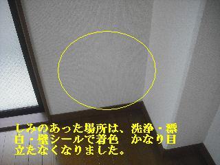 f0031037_2124947.jpg