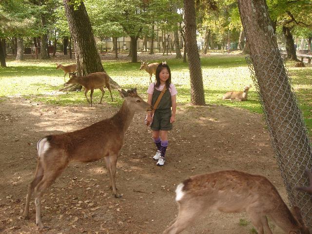 奈良に行ってきました。後編_e0131560_17573380.jpg