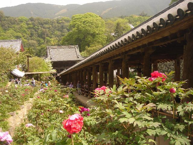 奈良に行ってきました。後編_e0131560_1812045.jpg